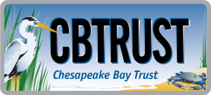 FRIDAY FOCUS: Chesapeake Bay Trust Image
