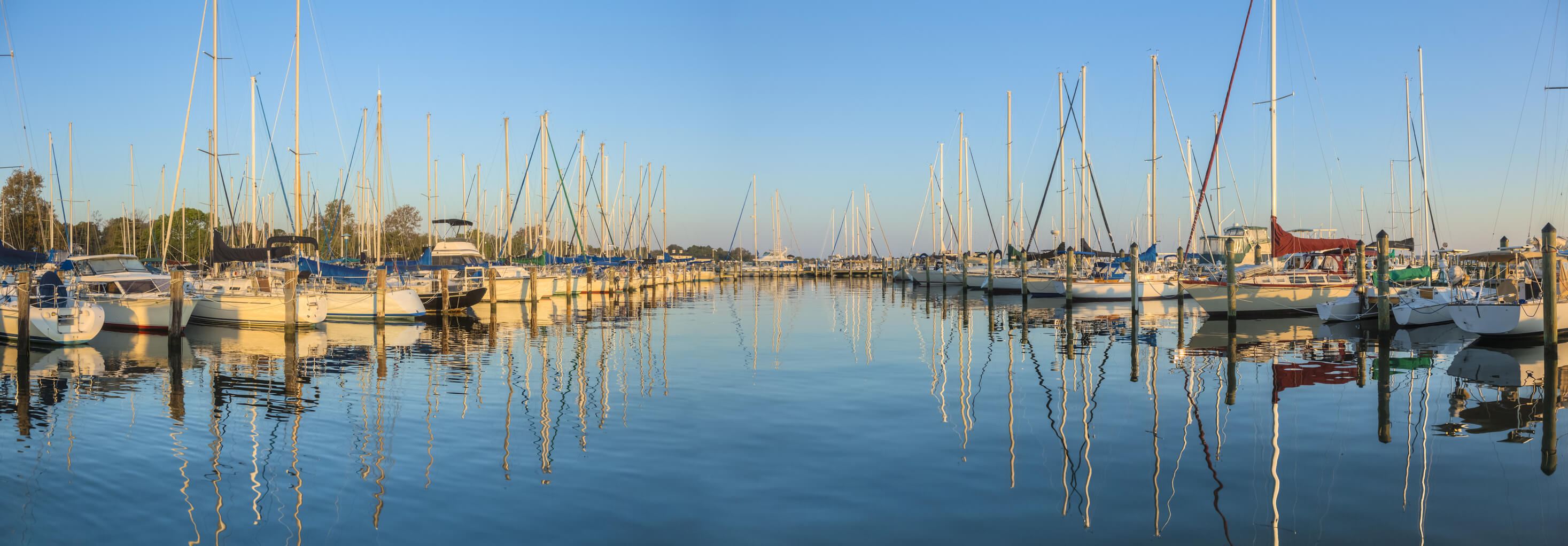 Sailboats in Port